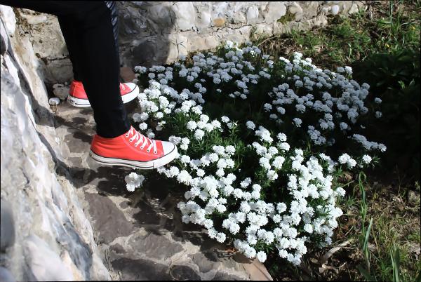 Converse outfit fashion blogger adolescenza tumblr theFashiondiet fashion blog