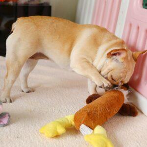 Accessori per cuccioli: dove e come acquistarli online